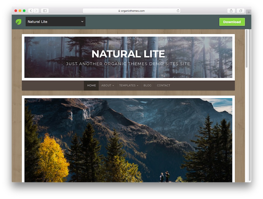 Natural Lite WordPress theme demo for blogs