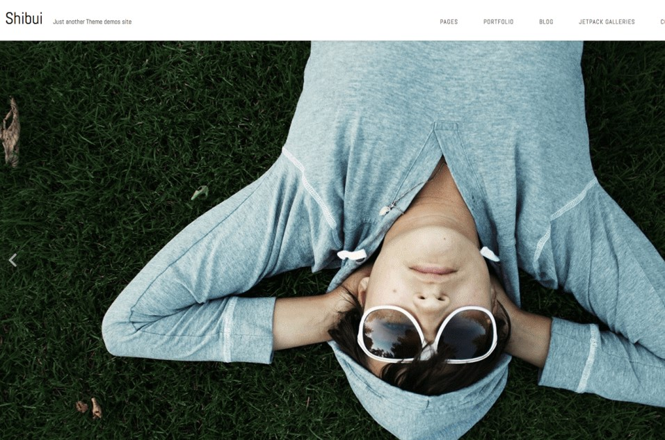 shibui WordPress portfolio theme