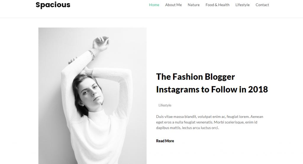 Spacious Free WordPress Blog Theme