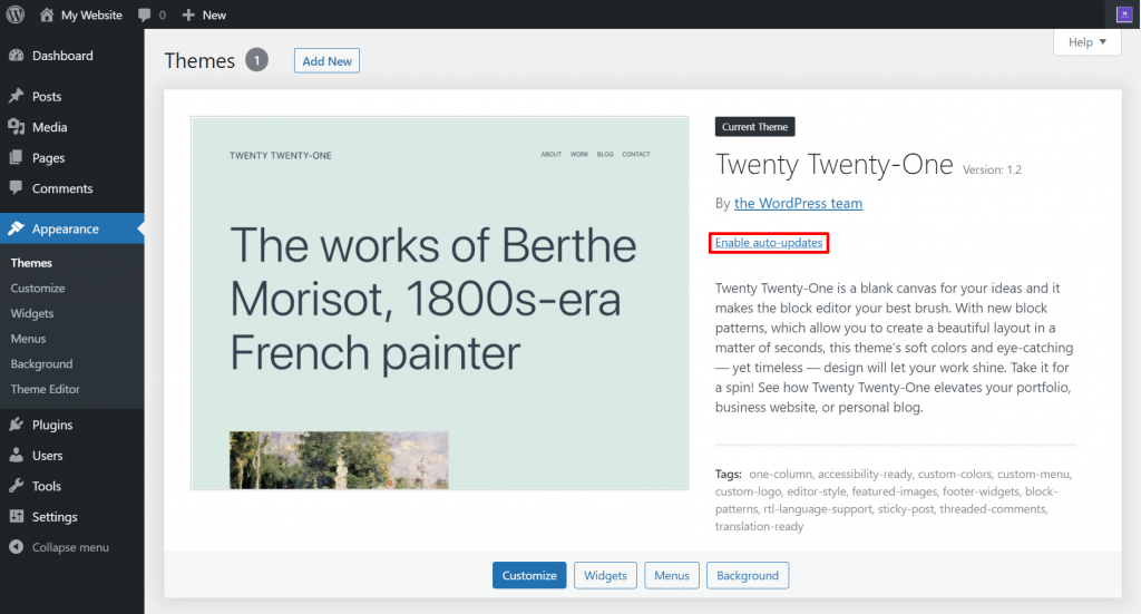 Enabling auto-updates on WordPress