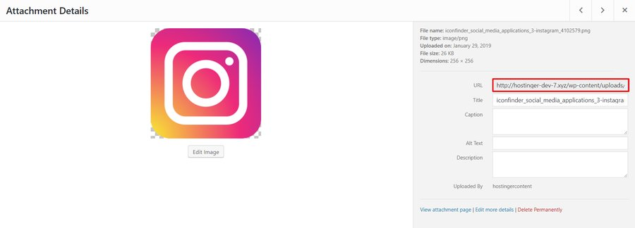 Instagram logo WordPress media library details