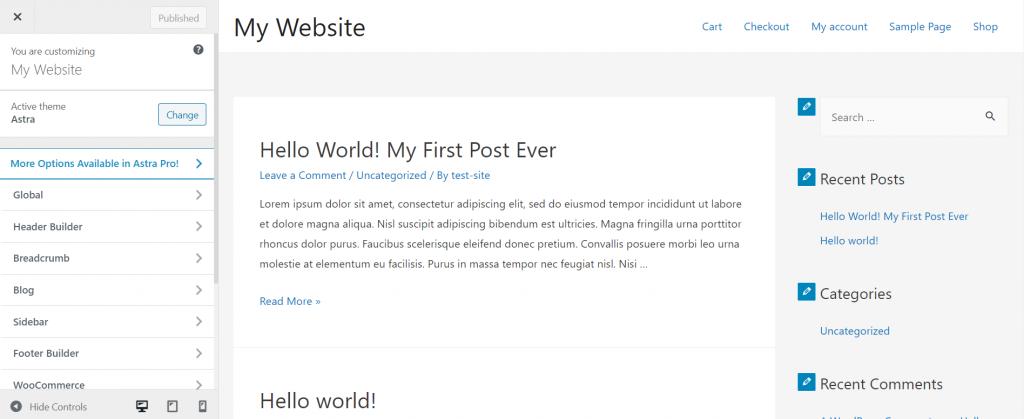 WordPress customizer for Astra theme