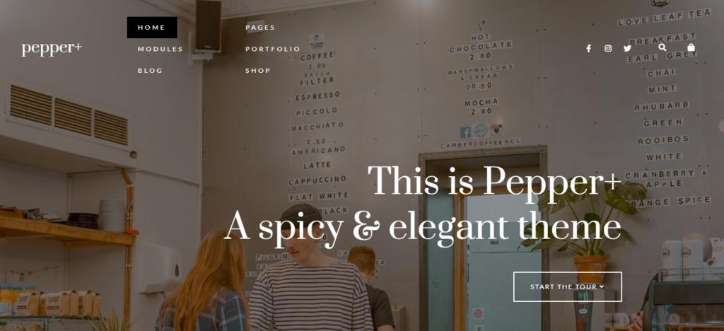 Pepper woocommerce WordPress theme