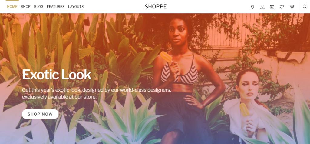 Shoppe woocommerce wordpress theme