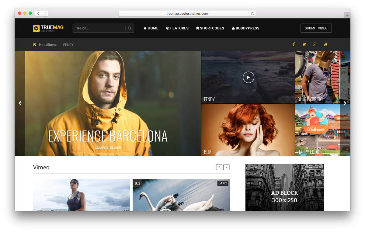 true mag wordpress video theme