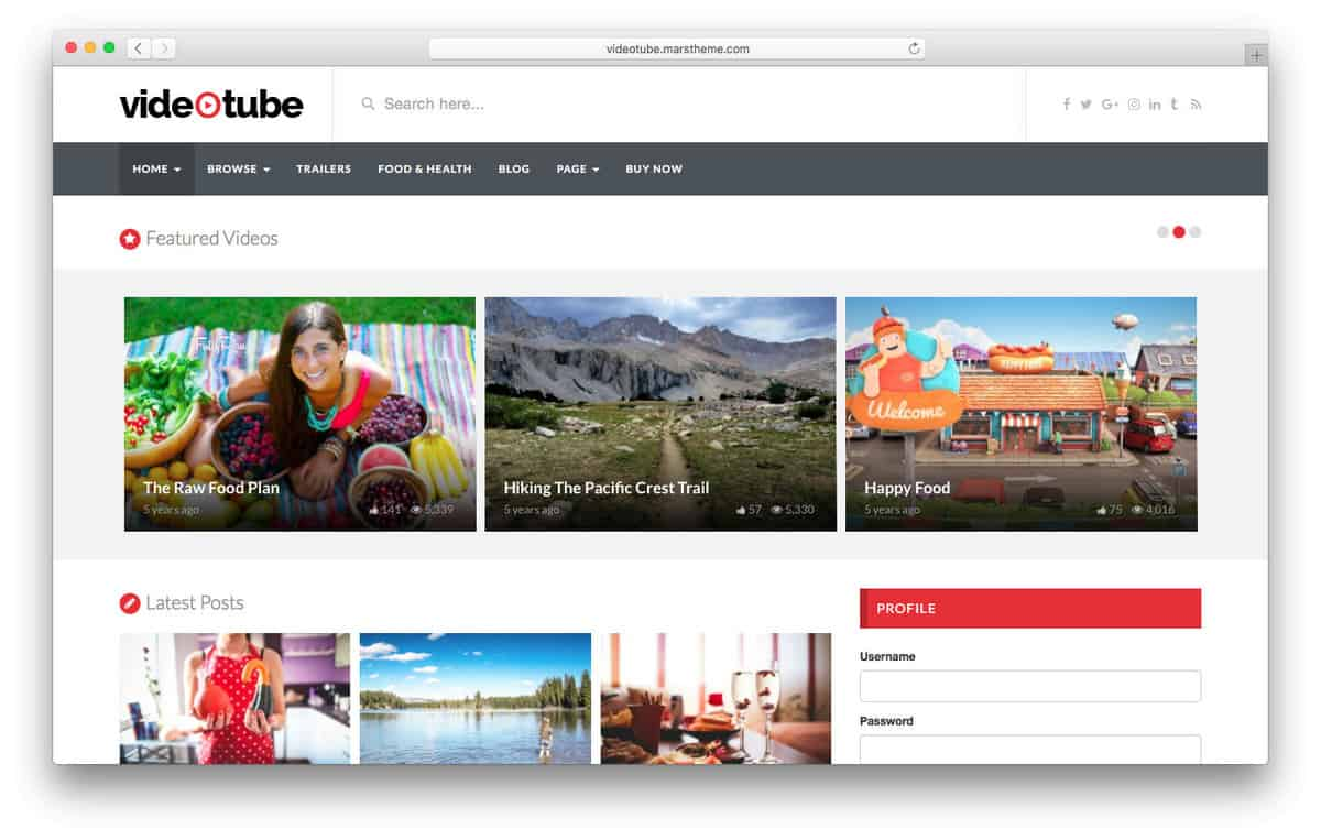 videotube wordpress video theme