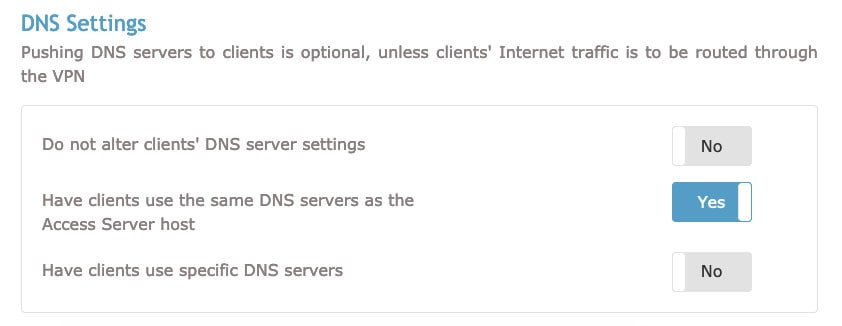 OpenVPN DNS settings section