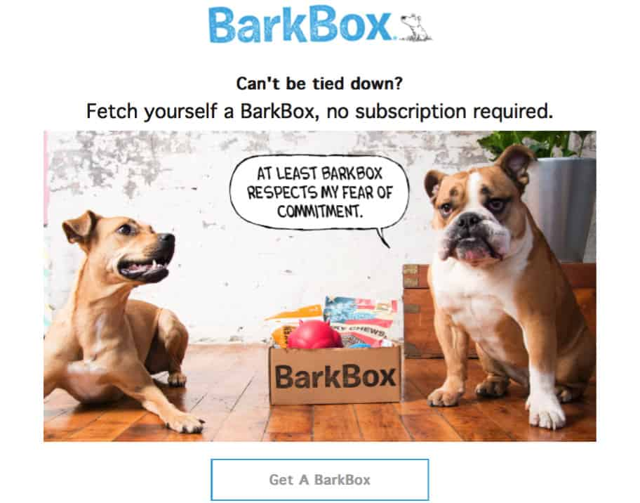 BarkBox Newsletter as a Content Marketing Strategy
