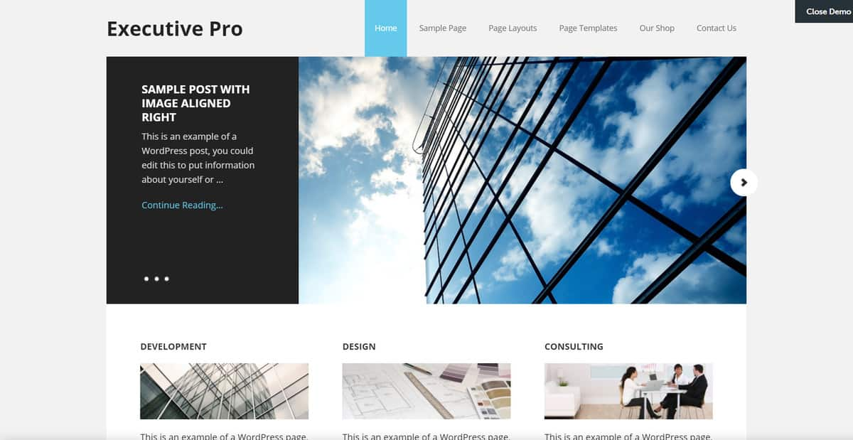 The demo of Executive Pro theme