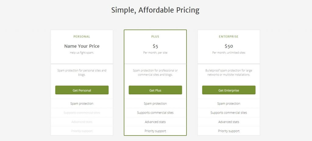 You have to choose between three Akismet subscription plans