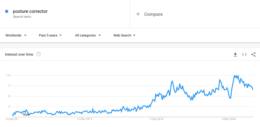 Google Trends Chart for Posture Correctors