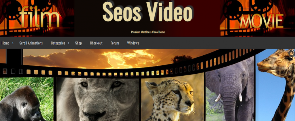 tema para wordpress seos video