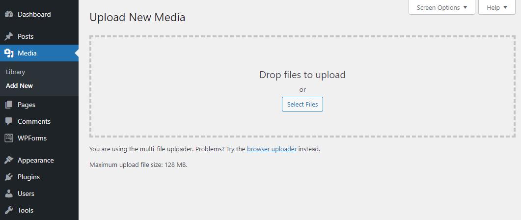 Screenshot of WordPress's add a media file form