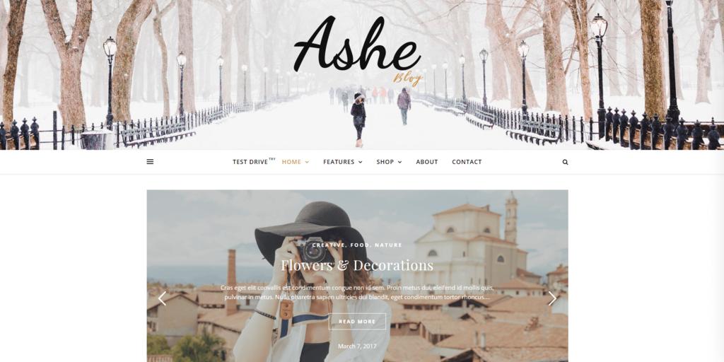 Ashe blog demo