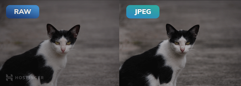 Side-by-side comparison of an image in RAW and JPEG.