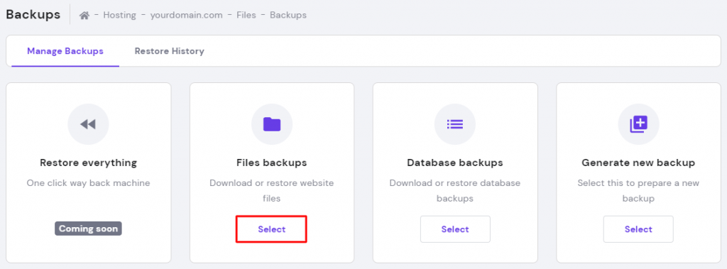 File backups option in the backups section in hPanel