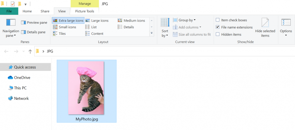Window showing the picture after its  file name extension has been fixed.