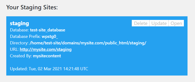 WP Staging's information about the created staging site.