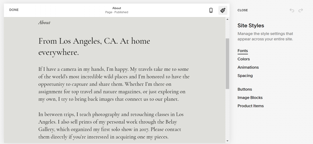 A screenshot showing the Squarespace's design tools.