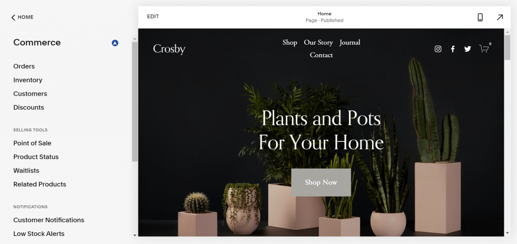 A screenshot showing Squarespace's tools to build an online store.