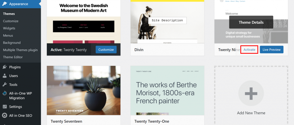 A screenshot from the WordPress dashboard showing an active theme and the one we will customize,
