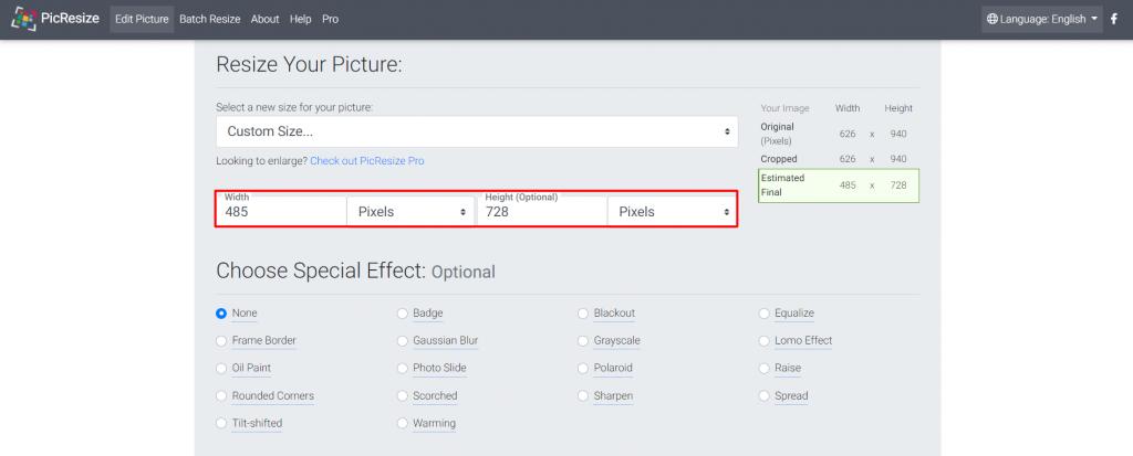 PicResize custom size options.