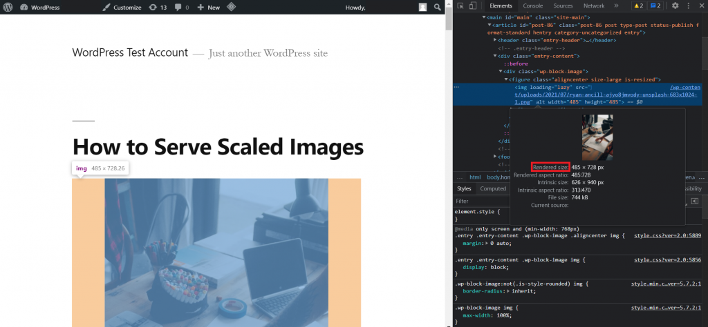DevTools panel, highlighting the image rendered size.
