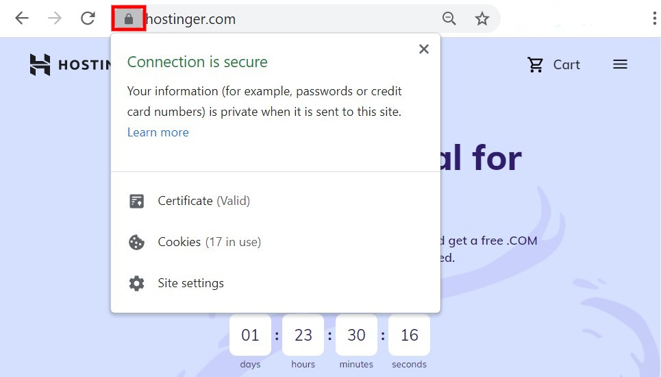 SSL padlock symbol informing that the connection is secure.