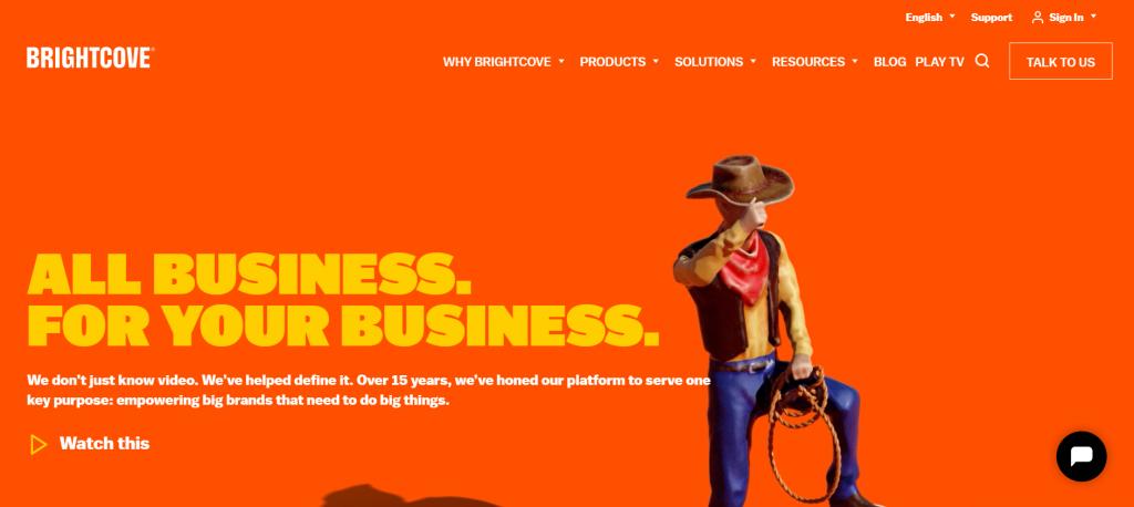 Brightcove homepage