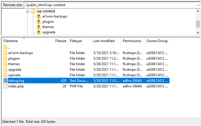debug.log file located in the wp-content folder
