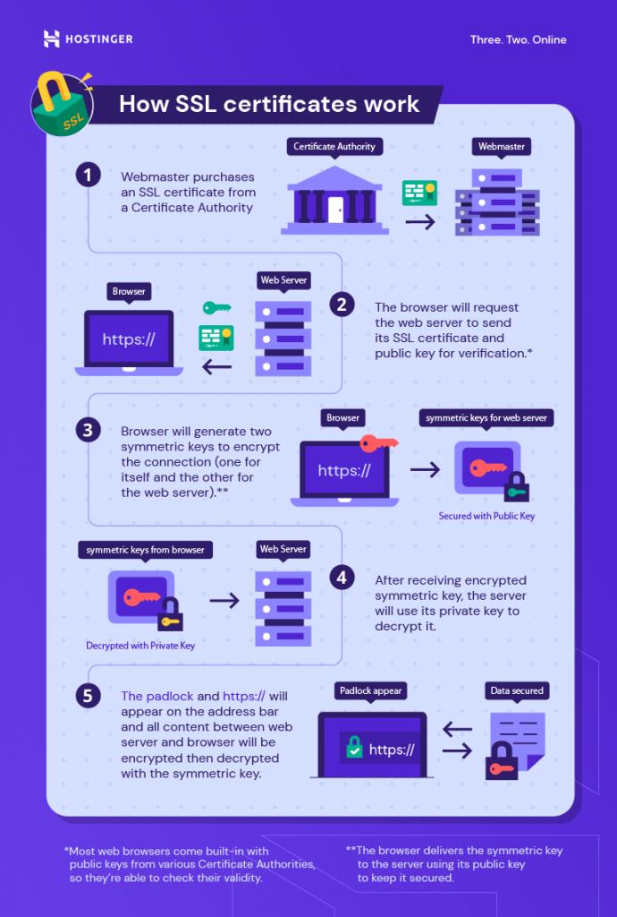 An infographic describing how SSL certificates work.