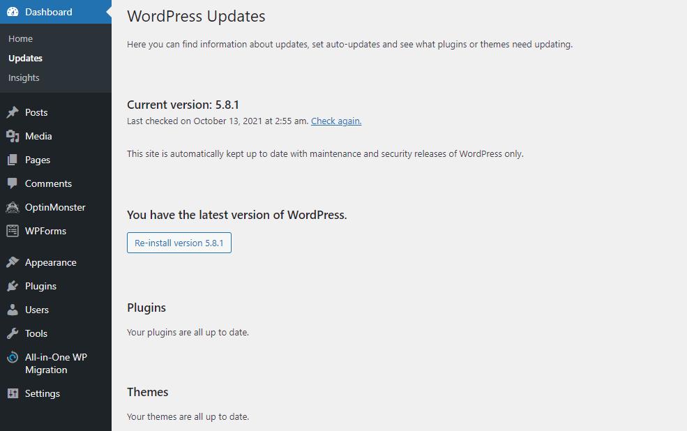 WordPress Updates section on admin panel.